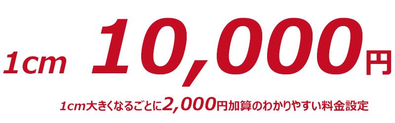 デントリペア1cmの料金は10,000円